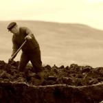 Scavando scavando